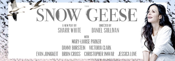 The Snow Geese